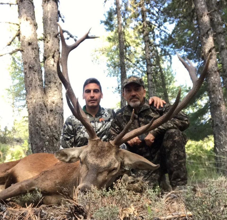 Gescin Caza Mayor en España 11-20 rececho de ciervo 06